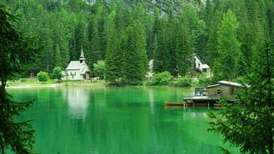 北京绿化承包公司